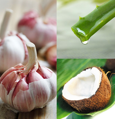 garlic etc triptych