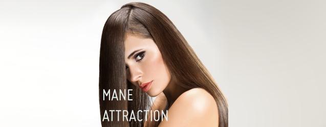 mane attract